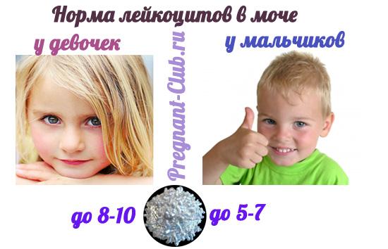 норма количества лейкоцитов в моче у детей