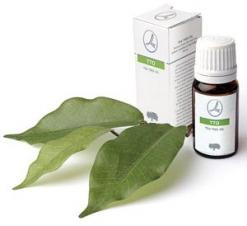 масло чайного дерева для лечения